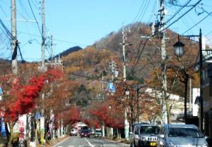 旧軽井沢 2013 1112 02