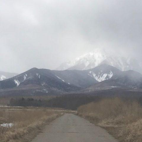 春まだ遠く 八ヶ岳高原海ノ口自...